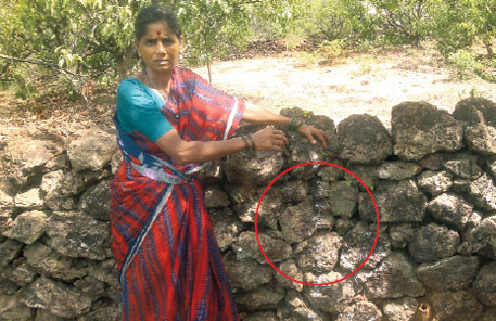 Faded white line has been marked by NPCIL for building a wall, says Latika Pawar