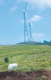 Suzlon windmills on tribal land