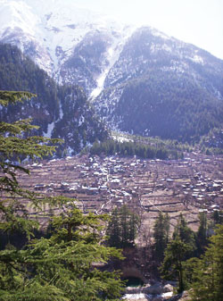 Himalayan glaciers are thinning