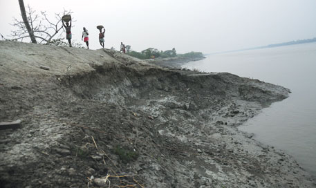 Fancy wall for Sundarbans