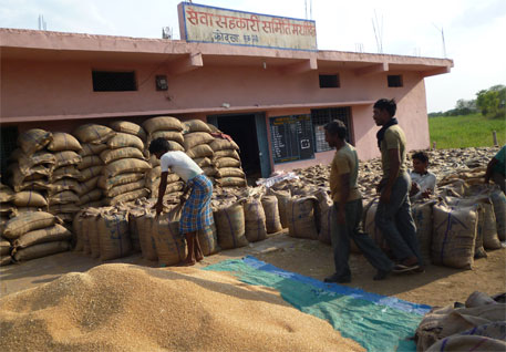 Centre raises minimum support price for paddy by meagre Rs 50