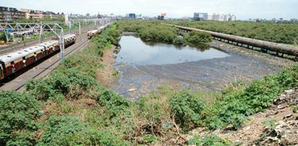 Centre proposes controls over wetlands
