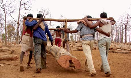 Promised Moon, Paid Pittance - Madhya Pradesh