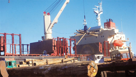 Gujarat's Kandla port receives 70 per cent of timber imported into the country