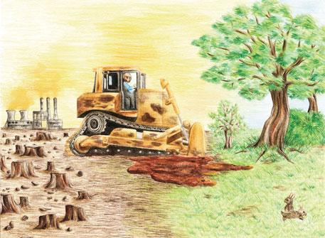 Afforestation interrupted