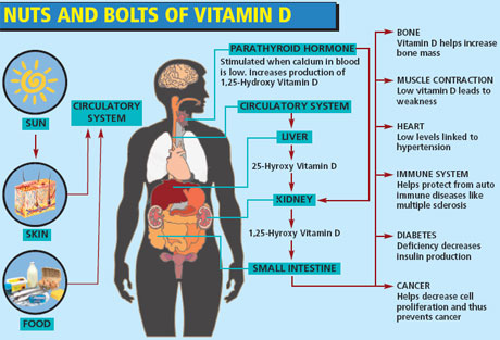 Vitamin D complex B12 Deficiency Skin