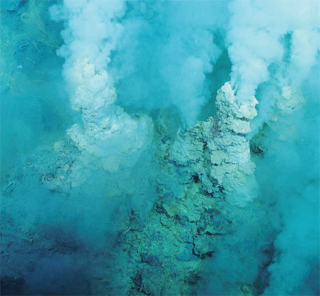 Hydrothermal vents, known for the prized polymetallic sulphide deposits, are nurseries of benthic species, many of which are yet to be discovered