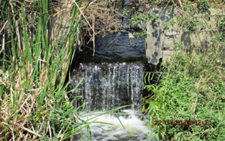 Final treated sewage outfall, leading to drain and further to Vengayyana lake
