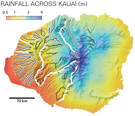 Colours show modern mean annual precipitation. White lines depict channels examined in the timeaveraged analysis, black lines depict channels examined in the transient analysis, which shows the evolution of river channel from their initial profiles to their modern profiles