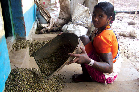 A Baiga girl winnows pounded sal seeds to remove husk