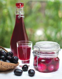 Jamun vinegar is a good source of probiotics