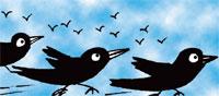 A bird gets noticed