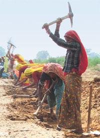 How women seized NREGA