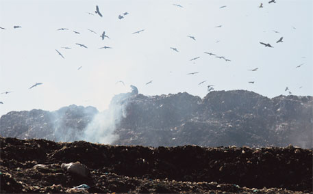 MoEF withdraws draft amendments to solid waste management rules