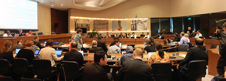 Meeting of the contact group on alternatives to ozone-depleting substances (Photo courtesy  IISD reporting services)