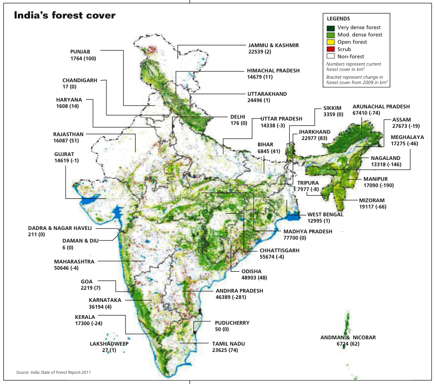 India's forest cover declines
