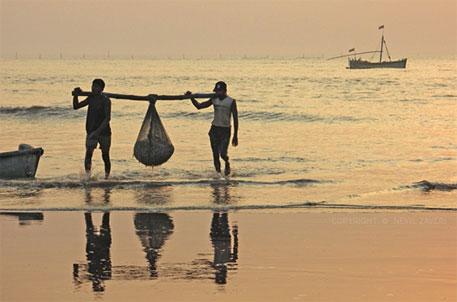 Cyclone Nilofar: Gujarat initiates precautionary measures