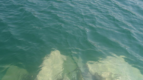 The lake water is visibly clear, with minimal inhabitation and pollution in the catchment