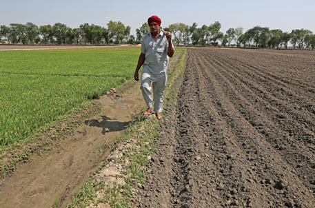 BJP's maiden budget disappointing for farmers