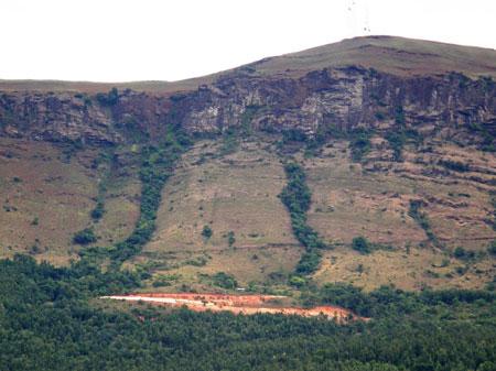 Grasslands in Western Ghats diverted for resort construction