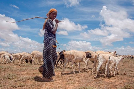 Pastoral community in Kenya at high risk from climate change