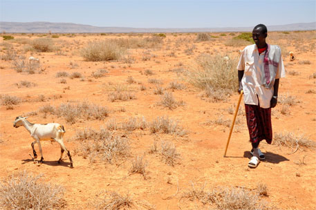 Climate change impacts on Africa to be substantially greater than rest of the world