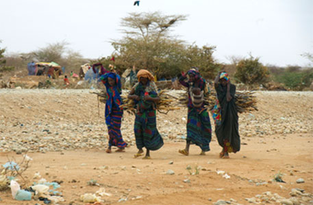Drought may cause food shortage in southern Africa, says UN agency