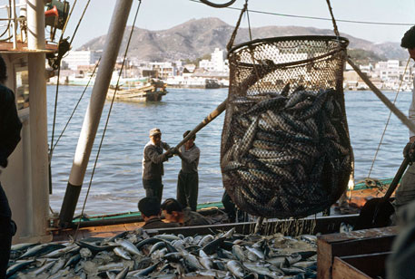 World Bank sanctions fund to strengthen fisheries management