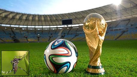 Dengue shadow over FIFA 2014