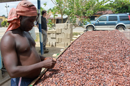Ghana's cocoa industry aims at sustainability