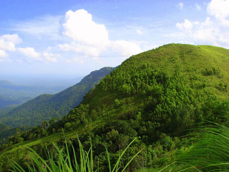 Environment ministry's desperate attempts to suppress expert panel report on Western Ghats