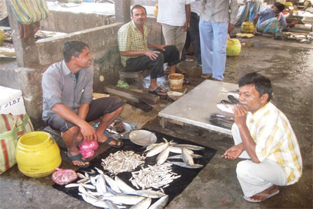 Cyclone hudhud impact: lower Assam flooded with hilsa