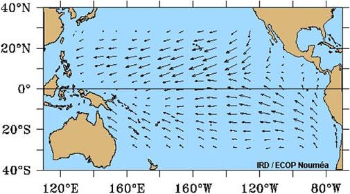 Amidst the El Niño buzz, Pacific Ocean cools down