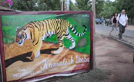 Supreme Court bans tourism in core tiger habitats
