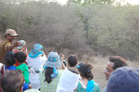 Rajasthan drafts its own wildlife tourism guidelines