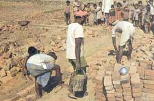 Employment schemes fail to ease rural poverty