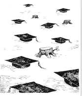 Too many graduates