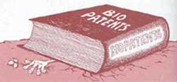 Patent paradox