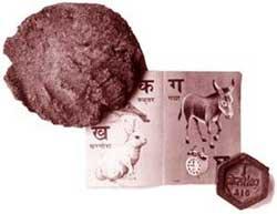 The poverty of Amartya Sen