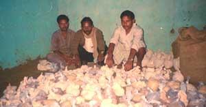 Dharohar's dividends