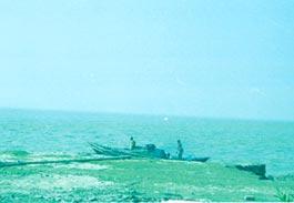 Fisherfolk banned from Jambudwip island