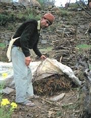 Organic farming: Reaping mixed benefits