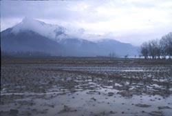 J&K's Wullar lake rid of encroachments