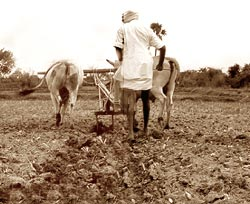 A debt-ridden state can offer little to its indebted farmers