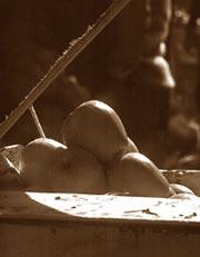 Longer shelf-life of apples wi (Credit: Pradip Saha / CSE)
