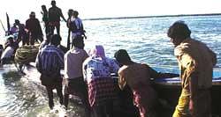 Fisheries Census-2005
