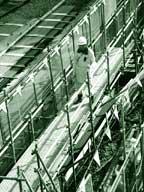 Tracking asbestos victims; Jap