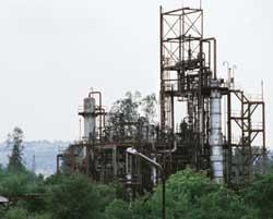 Bhopal's new generation