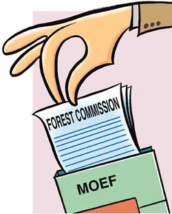 Forest commission report on forest rights bill validates government's stand