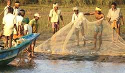 Livelihoods disrupted